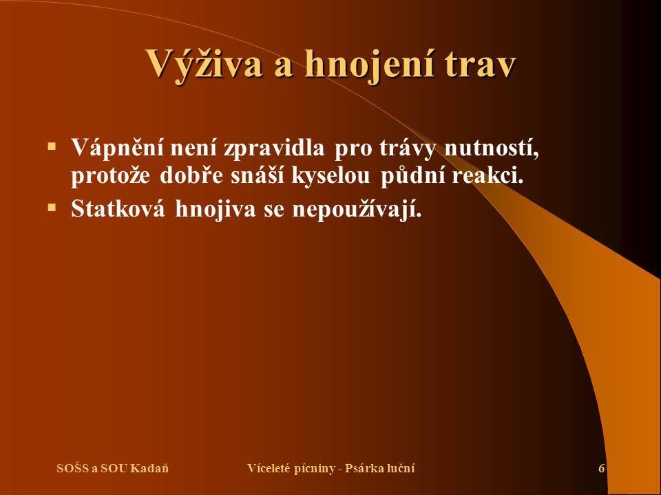SOŠS a SOU KadaňVíceleté pícniny - Psárka luční7 Zpracování půdy  Na podzim se provádí orba na střední hloubku.