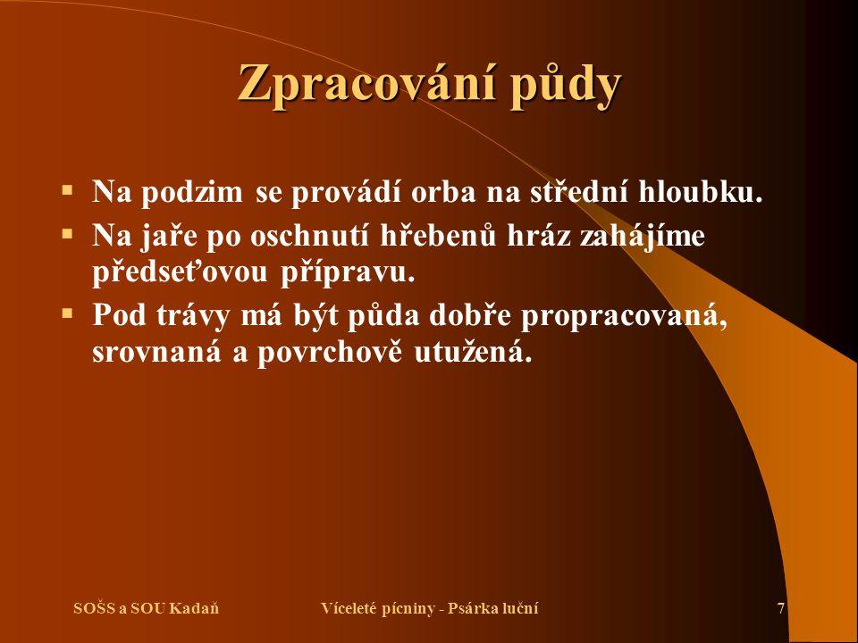 SOŠS a SOU KadaňVíceleté pícniny - Psárka luční8 Setí trav  Používáme biologicky hodnotné a uznané osivo.