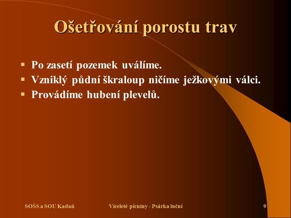 SOŠS a SOU KadaňVíceleté pícniny - Psárka luční10 Sklizeň trav  Na organizaci sklizně je třeba myslet již při zakládání porostu.