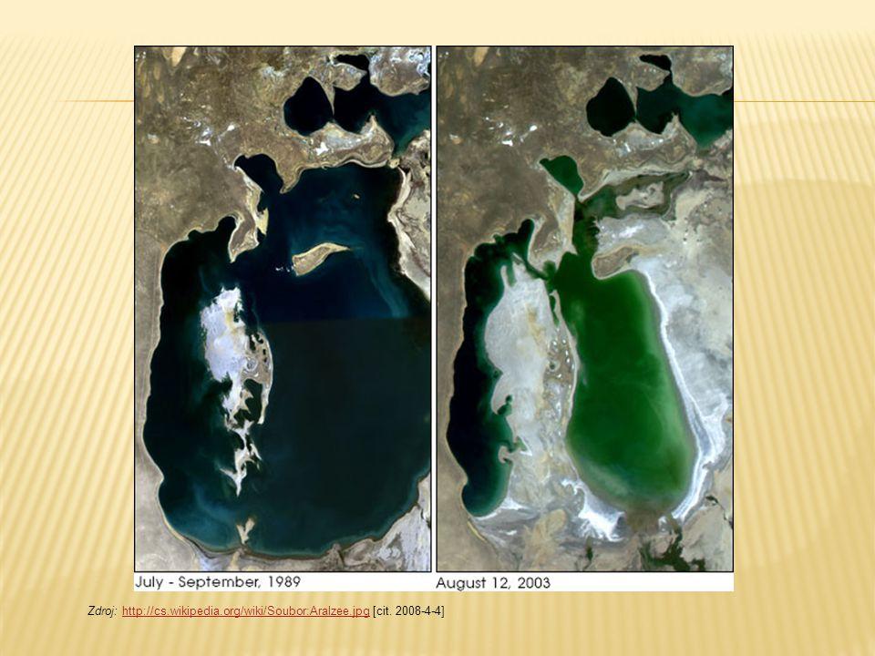 Zdroj: http://cs.wikipedia.org/wiki/Soubor:Aralzee.jpg [cit. 2008-4-4]http://cs.wikipedia.org/wiki/Soubor:Aralzee.jpg