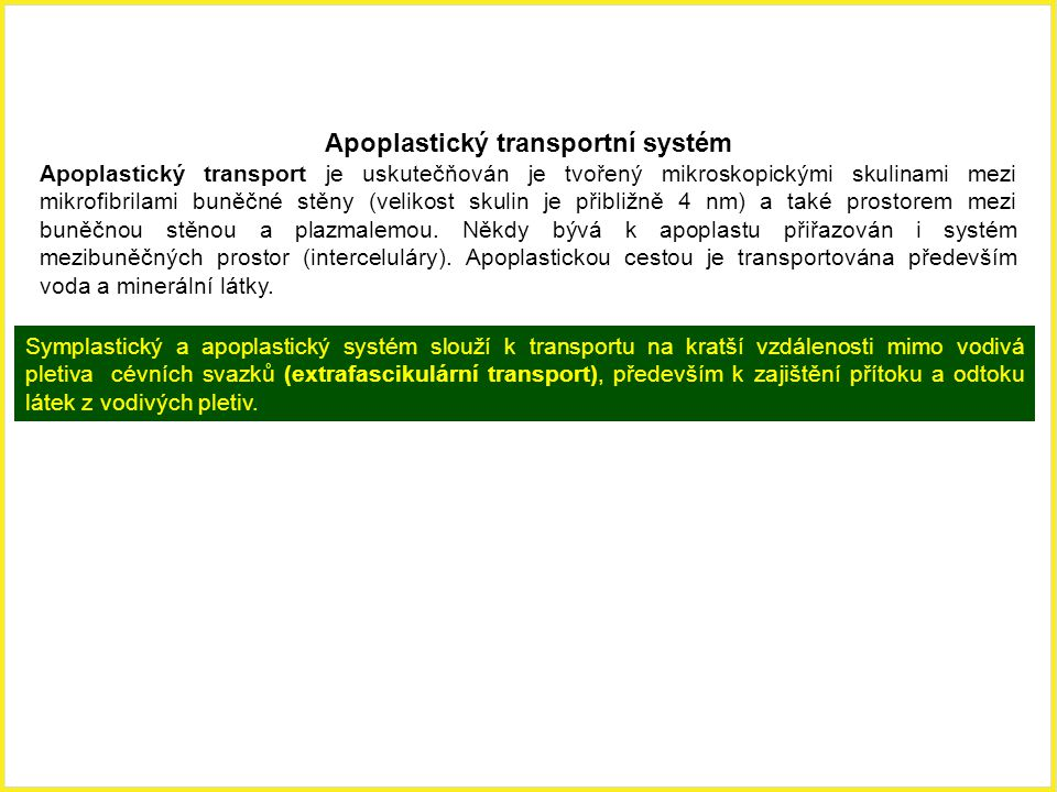 Apoplastický transportní systém Apoplastický transport je uskutečňován je tvořený mikroskopickými skulinami mezi mikrofibrilami buněčné stěny (velikos