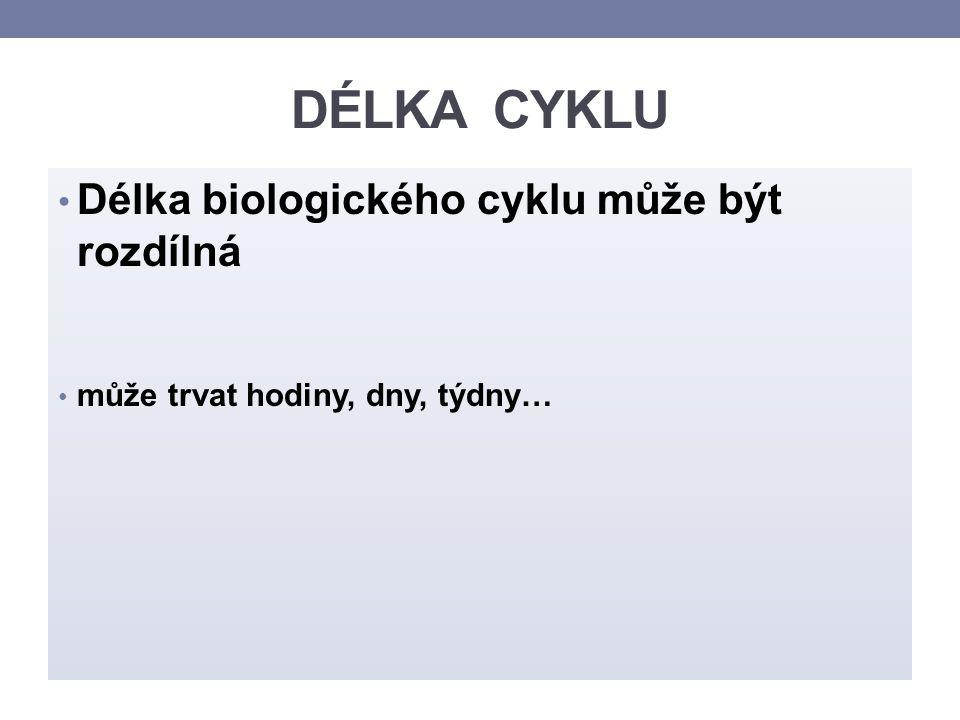 ZDROJE: TROJAN, Stanislav.Lékařská fyziologie. Praha: Grada Avicenum, 1994.