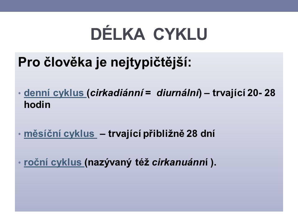 1.CIRKADIÁNNÍ RYTMUS U ČLOVĚKA = biologický rytmus trvající přibližně 1 den (20-28 hodin) (lat.