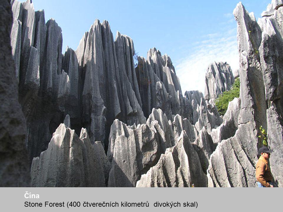 Čína Stone Forest (400 čtverečních kilometrů divokých skal)