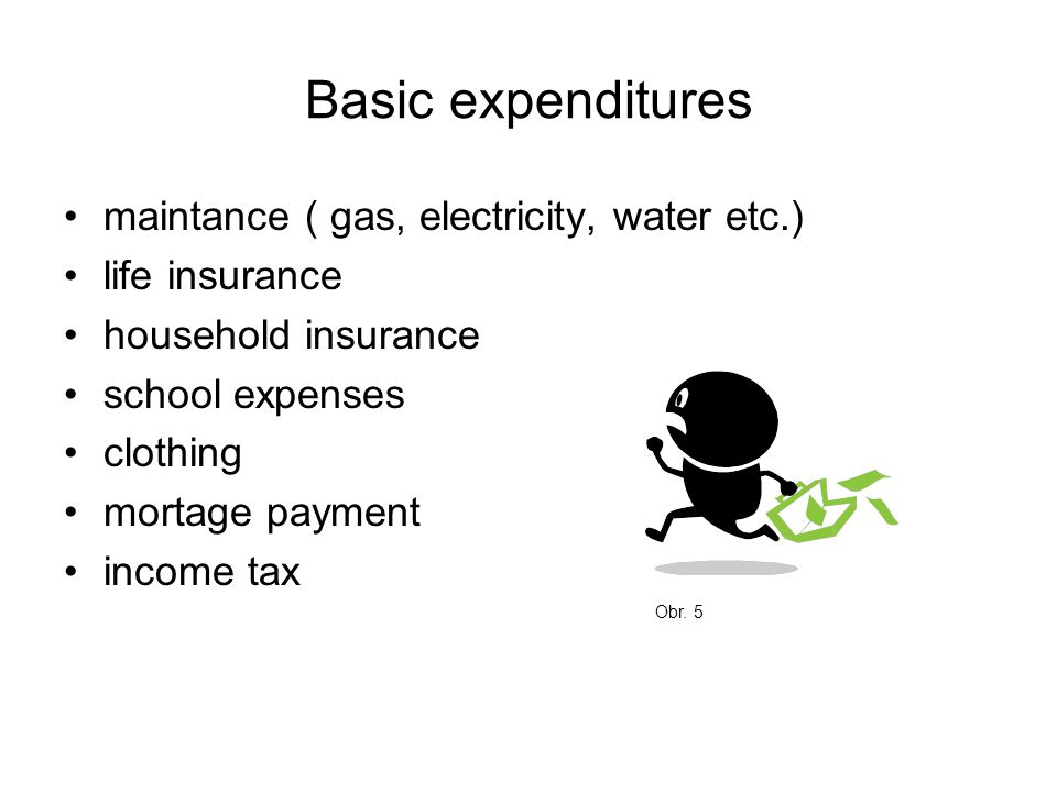 Basic expenditures maintance ( gas, electricity, water etc.) life insurance household insurance school expenses clothing mortage payment income tax Obr.