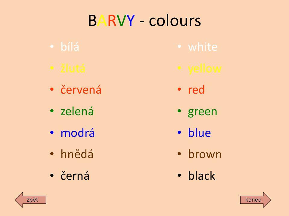BARVY - colours bílá žlutá červená zelená modrá hnědá černá white yellow red green blue brown black koneczpět