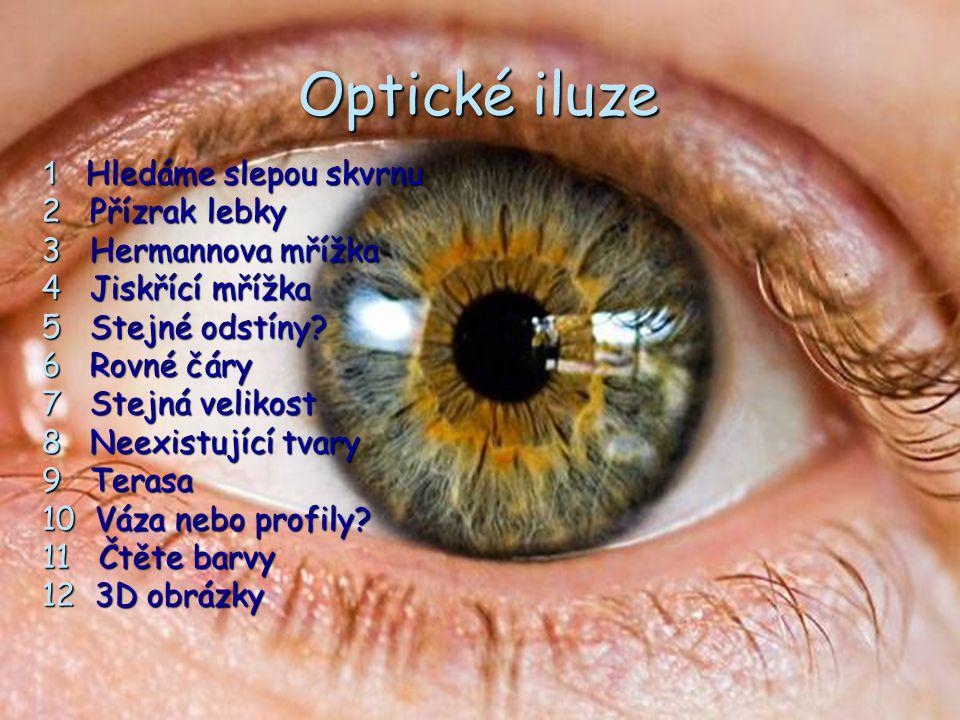 Optické iluze 1 Hledáme slepou skvrnu 2 Přízrak lebky 3 Hermannova mřížka 4 Jiskřící mřížka 5 Stejné odstíny? 6 Rovné čáry 7 Stejná velikost 8 Neexist