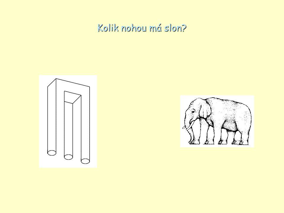 Kolik nohou má slon?