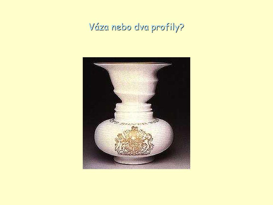 Váza nebo dva profily?