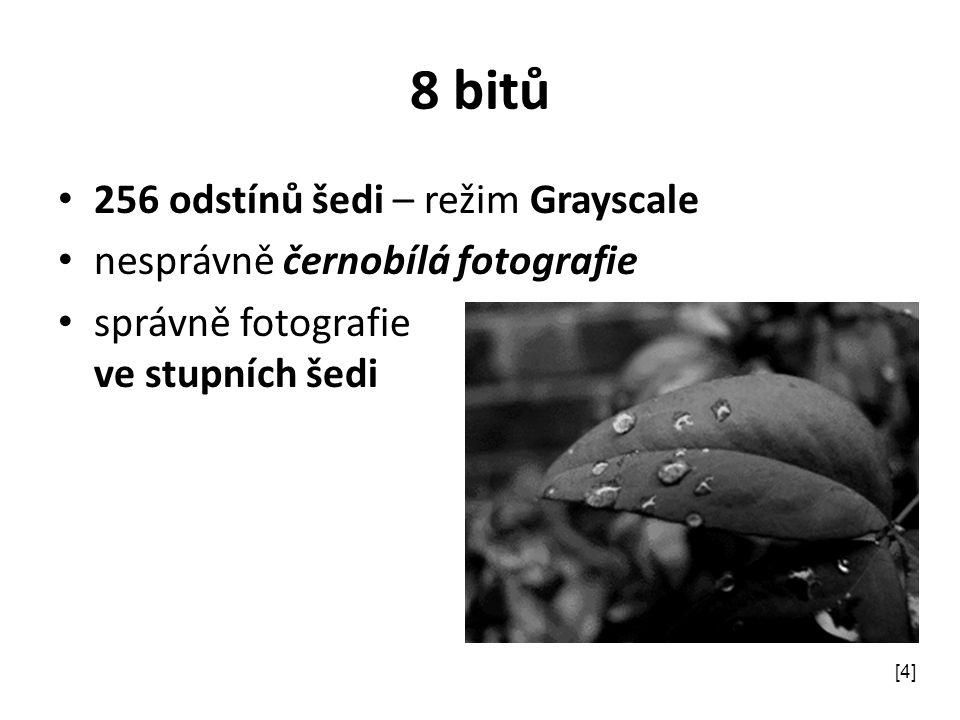 8 bitů 256 odstínů šedi – režim Grayscale nesprávně černobílá fotografie správně fotografie ve stupních šedi [4]