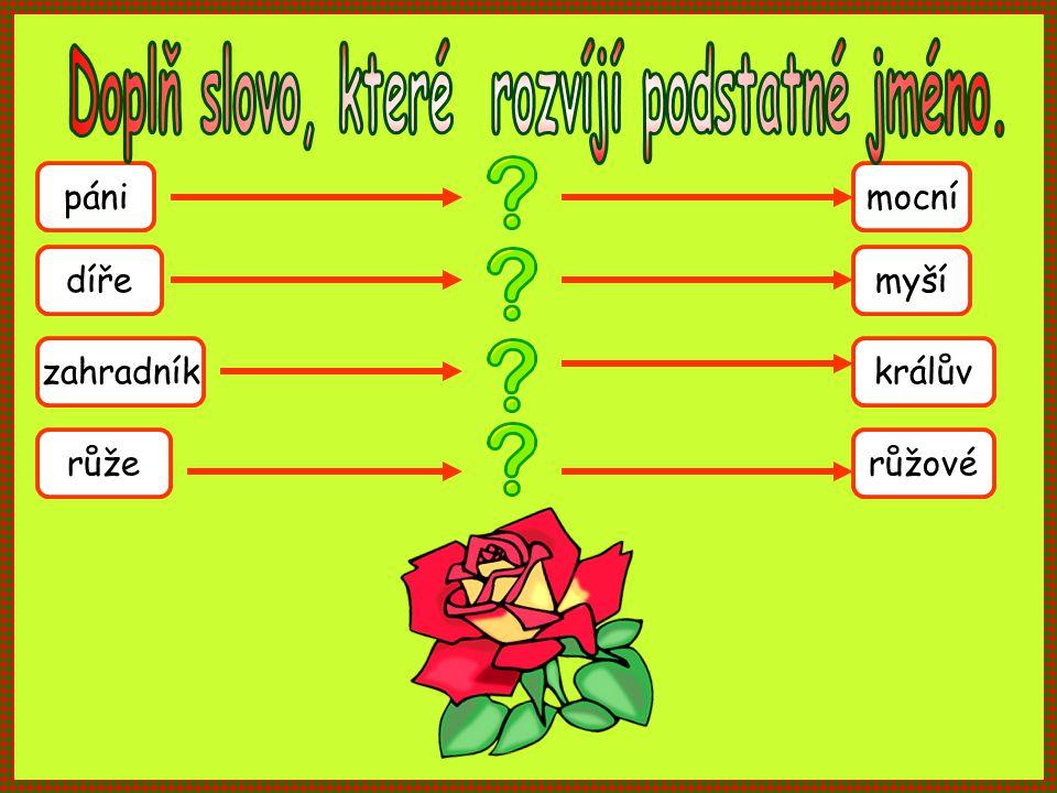 pánimocní dířemyší zahradníkkrálův růžerůžové