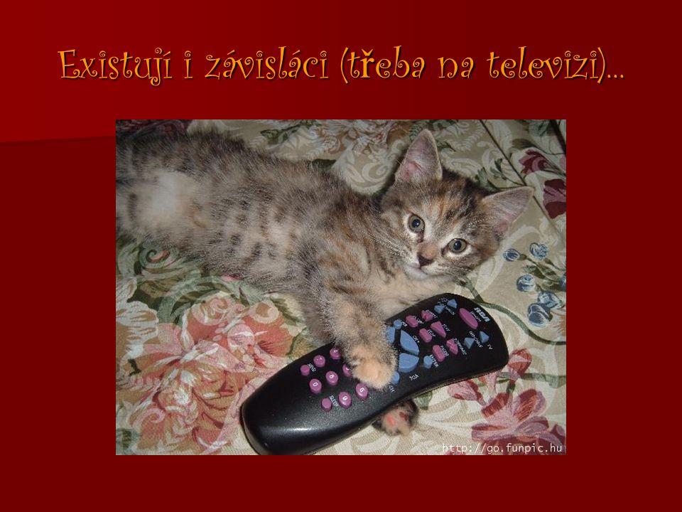 Existují i závisláci (t ř eba na televizi)...