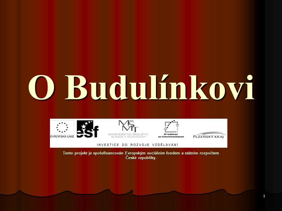1 O Budulínkovi O Budulínkovi Tento projekt je spolufinancován Evropským sociálním fondem a státním rozpočtem České republiky.