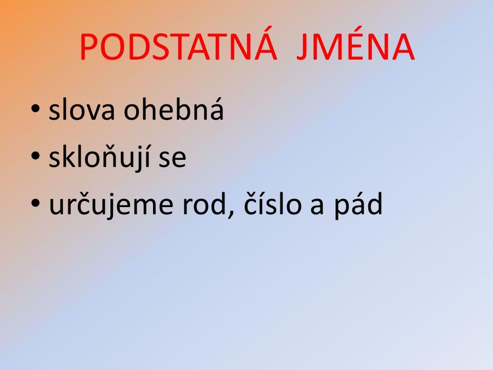 ROD PODSTATNÝCH JMEN MUŽSKÝŽENSKÝSTŘEDNÍ r.ž.r.stř.