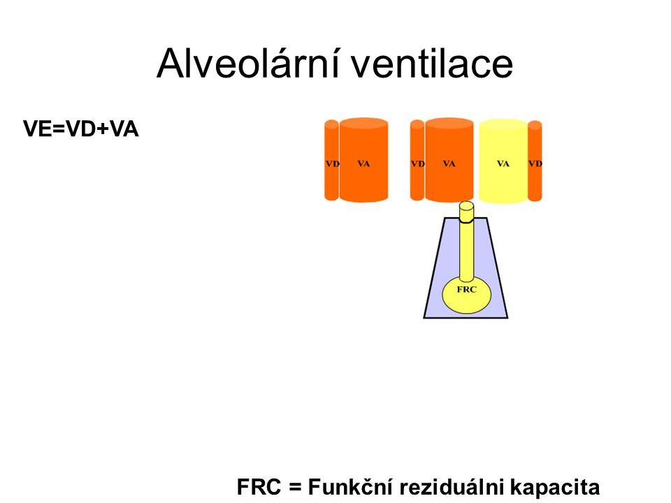 Alveolární ventilace VE=VD+VA FRC = Funkční reziduálni kapacita