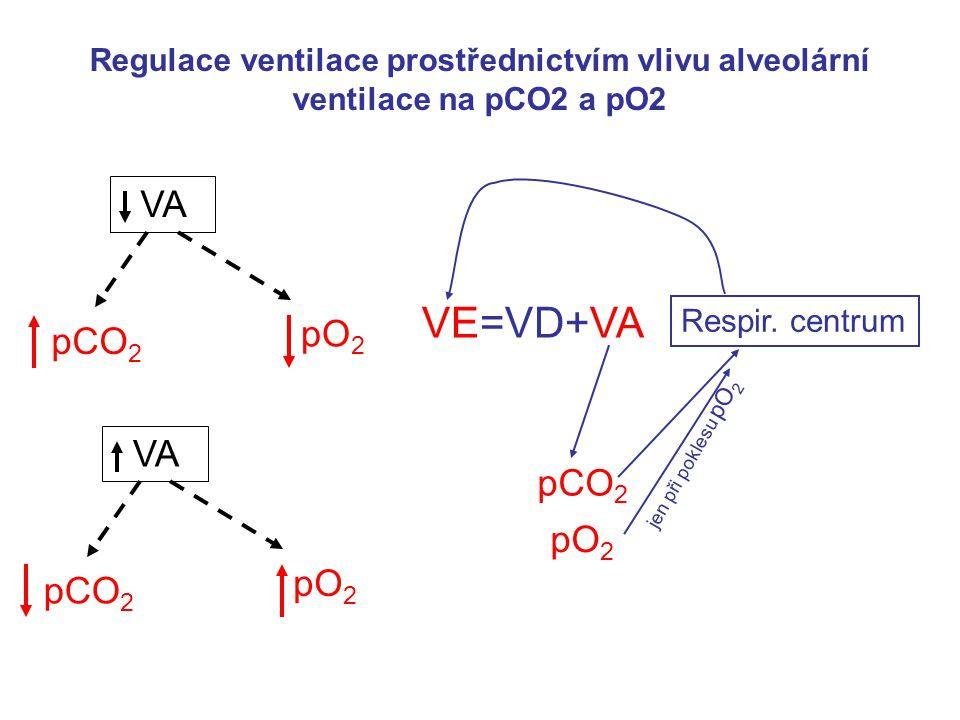 VA pCO 2 pO 2 pCO 2 pO 2 VE=VD+VA pCO 2 Respir.