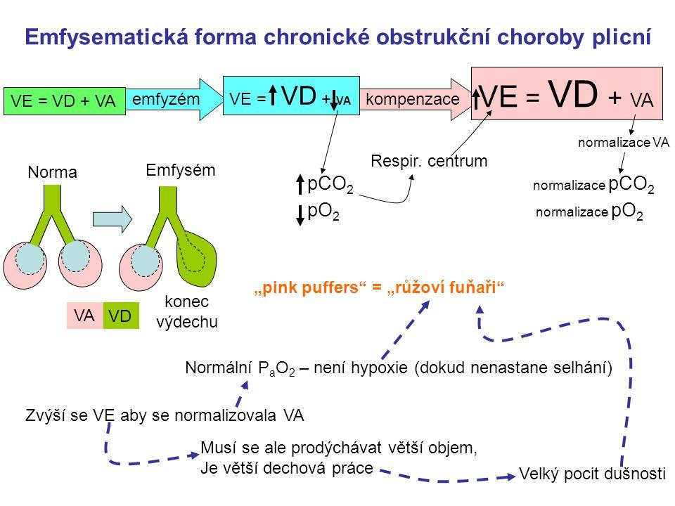 emfyzémkompenzace Emfysematická forma chronické obstrukční choroby plicní normalizace pCO 2 Respir.