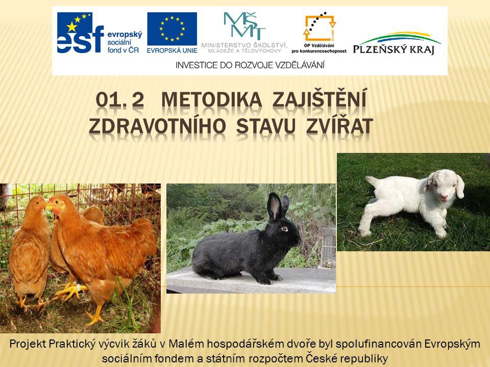 Projekt Praktický výcvik žáků v Malém hospodářském dvoře byl spolufinancován Evropským sociálním fondem a státním rozpočtem České republiky