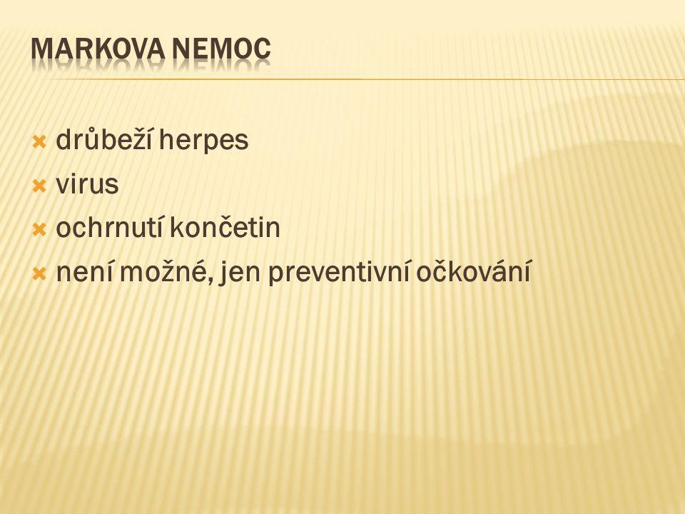  drůbeží herpes  virus  ochrnutí končetin  není možné, jen preventivní očkování