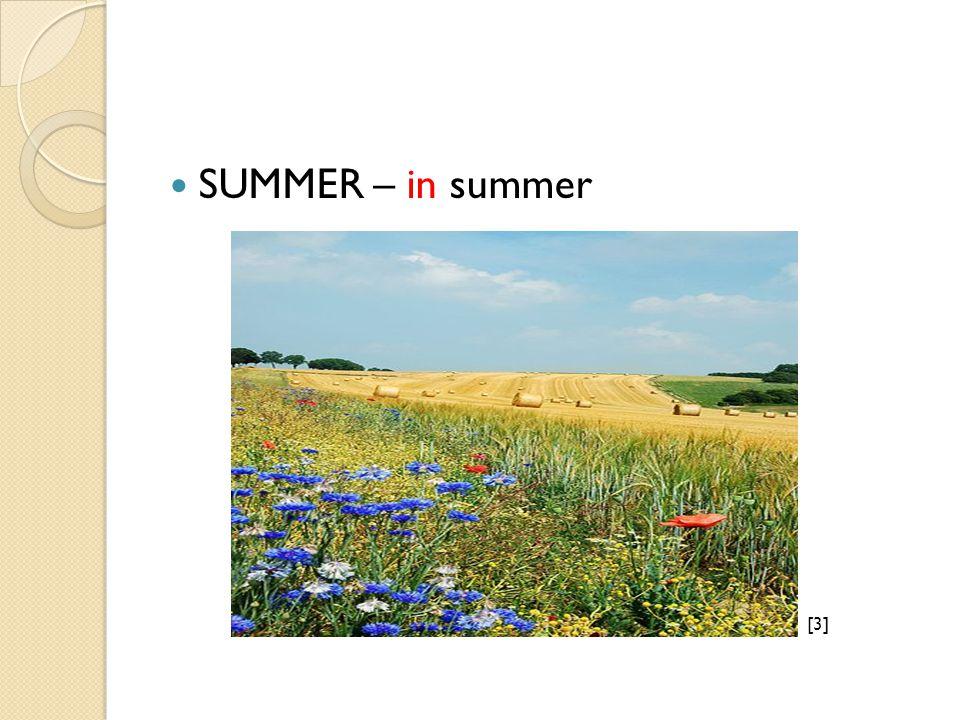 SUMMER – in summer [3][3]