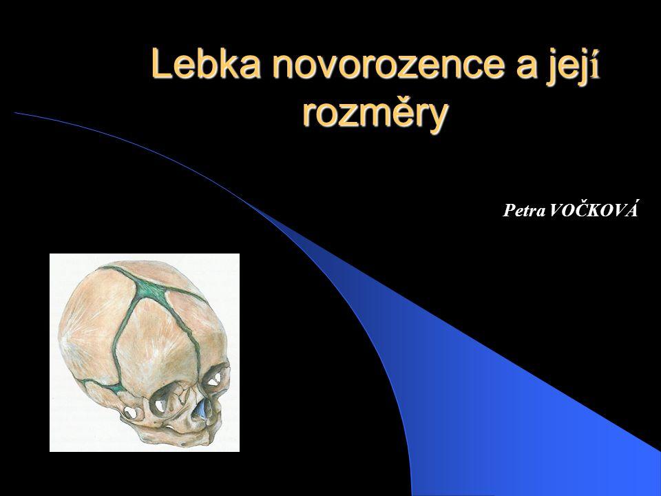 Lebka novorozence a jej í rozměry Petra VOČKOVÁ