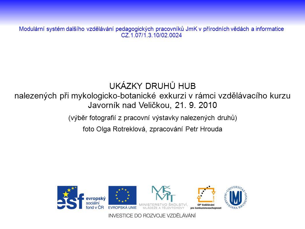 UKÁZKY DRUHŮ HUB nalezených při mykologicko-botanické exkurzi v rámci vzdělávacího kurzu Javorník nad Veličkou, 21. 9. 2010 (výběr fotografií z pracov