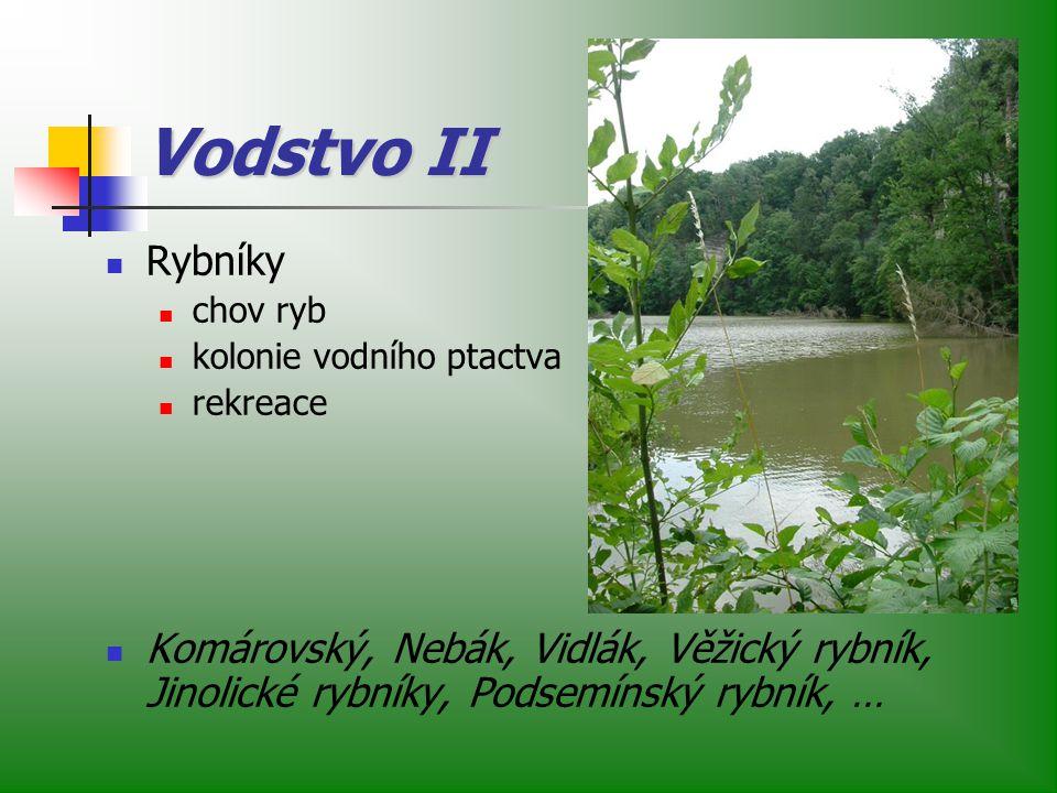 Vodstvo II Rybníky chov ryb kolonie vodního ptactva rekreace Komárovský, Nebák, Vidlák, Věžický rybník, Jinolické rybníky, Podsemínský rybník, …