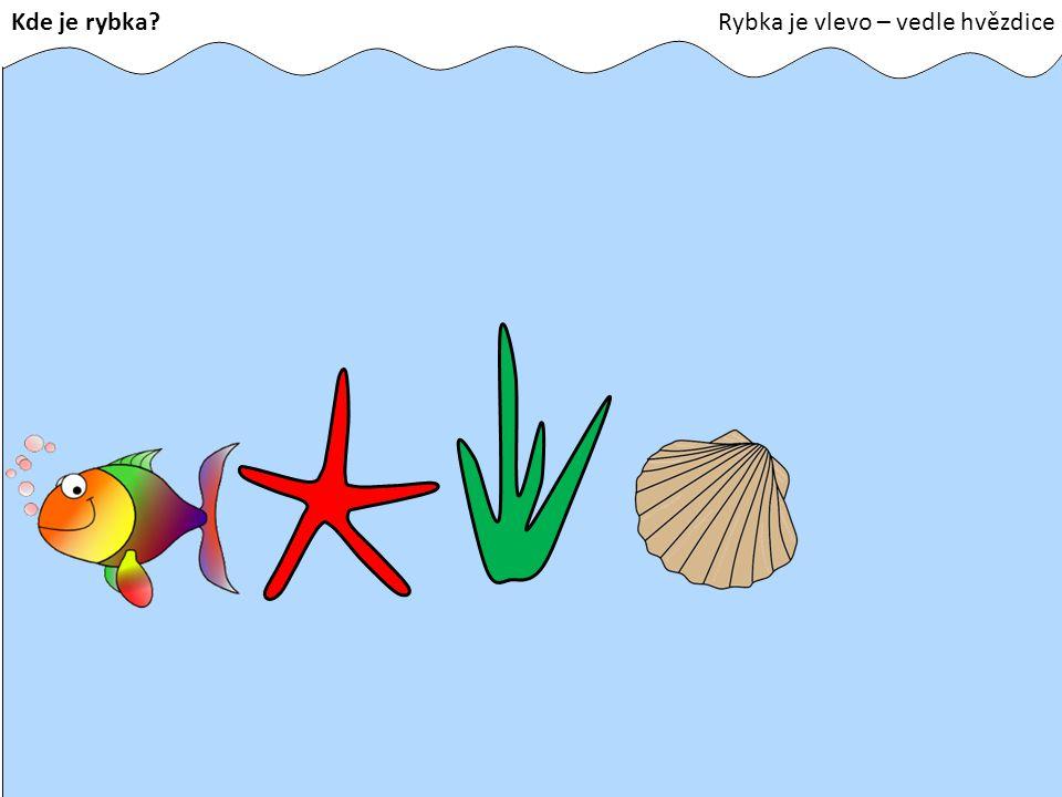 Kde je rybka?Rybka je vlevo – vedle hvězdice