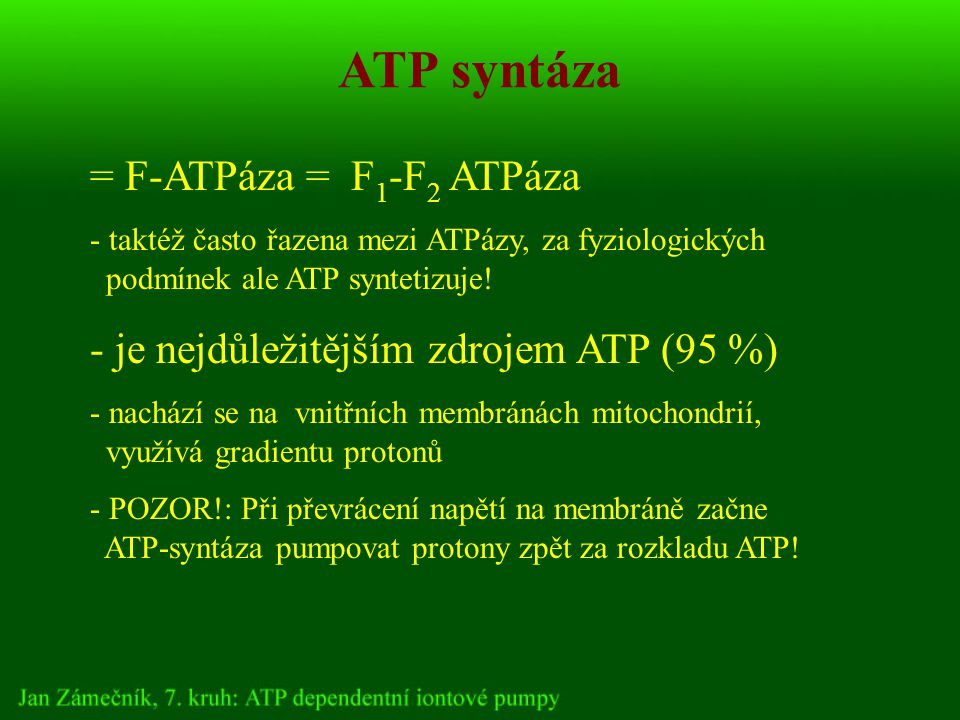 ATP syntáza = F-ATPáza = F 1 -F 2 ATPáza - taktéž často řazena mezi ATPázy, za fyziologických podmínek ale ATP syntetizuje.