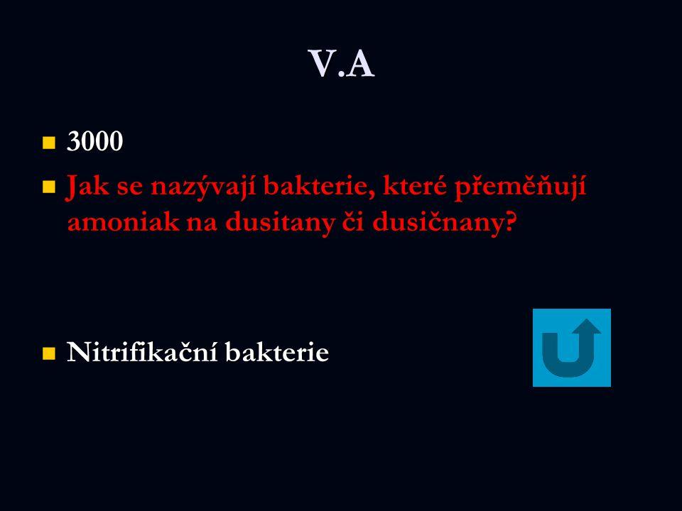 V.A 3000 3000 Jak se nazývají bakterie, které přeměňují amoniak na dusitany či dusičnany.