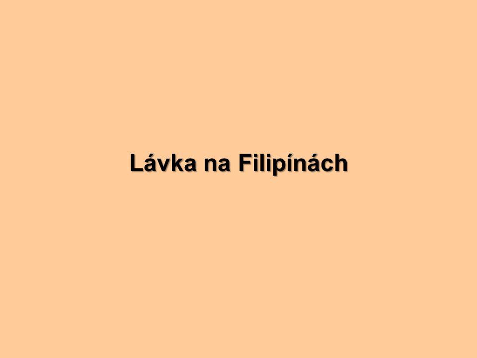 Lávka na Filipínách