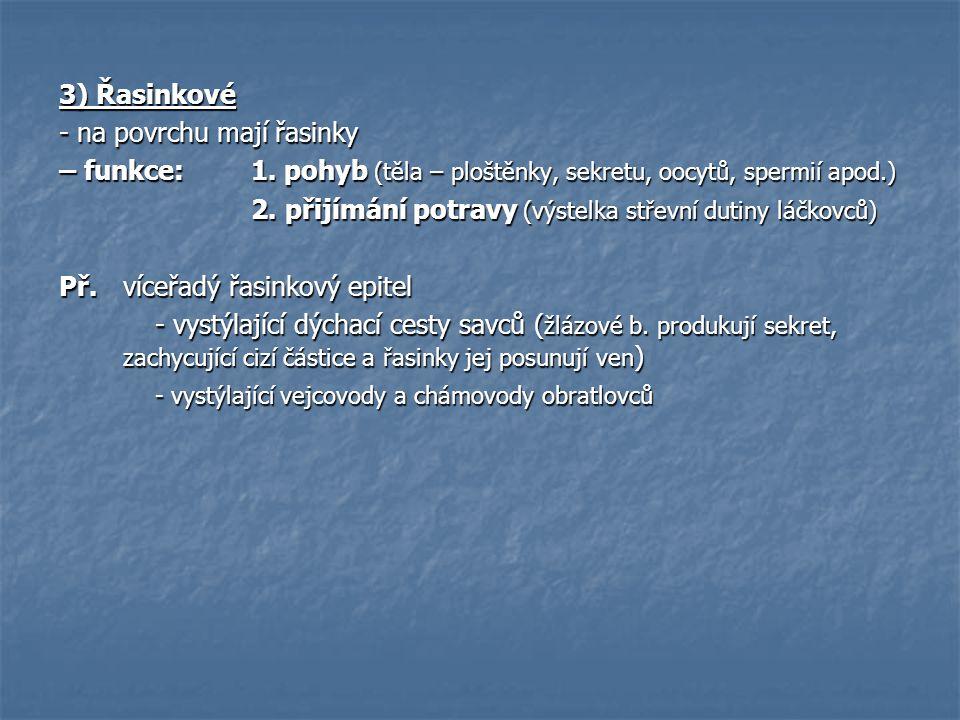 3) Řasinkové - na povrchu mají řasinky – funkce: 1. pohyb (těla – ploštěnky, sekretu, oocytů, spermií apod.) 2. přijímání potravy (výstelka střevní du