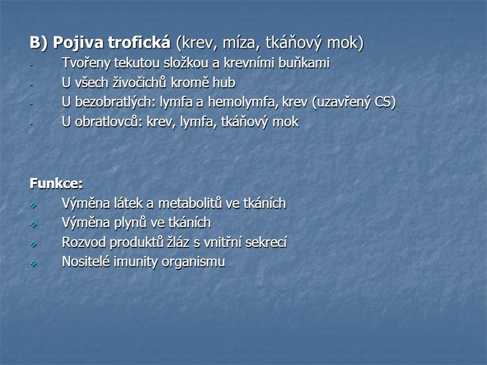 B) Pojiva trofická (krev, míza, tkáňový mok) - Tvořeny tekutou složkou a krevními buňkami - U všech živočichů kromě hub - U bezobratlých: lymfa a hemo