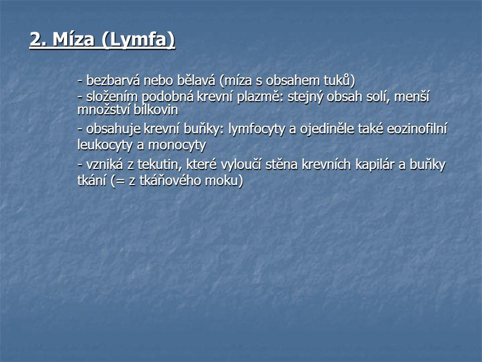 2. Míza (Lymfa) - bezbarvá nebo bělavá (míza s obsahem tuků) - složením podobná krevní plazmě: stejný obsah solí, menší množství bílkovin - obsahuje k