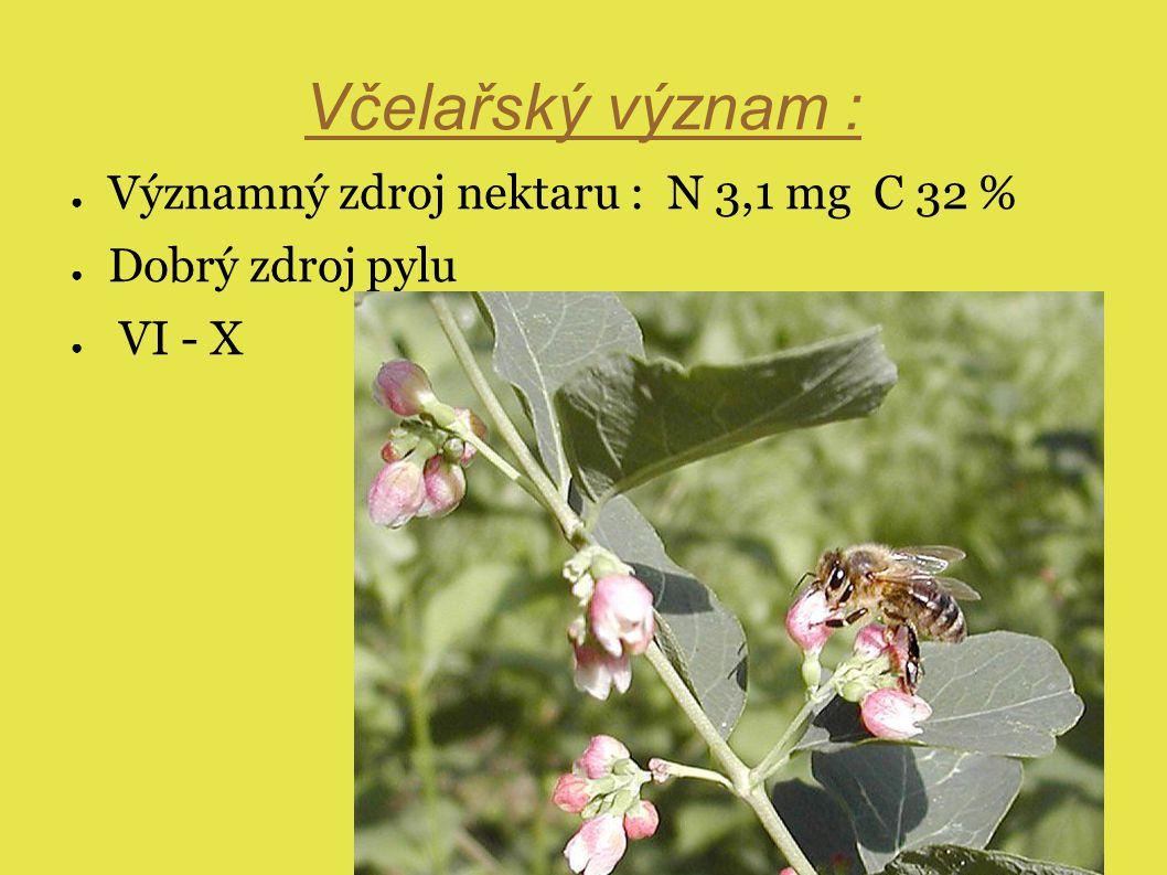 Včelařský význam : ● Významný zdroj nektaru : N 3,1 mg C 32 % ● Dobrý zdroj pylu ● VI - X