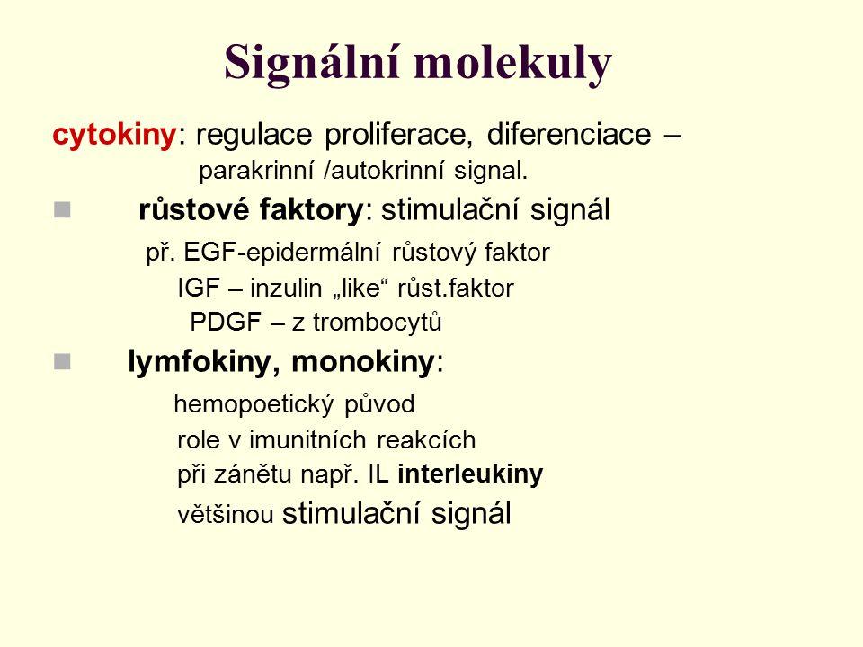 Signální molekuly cytokiny: regulace proliferace, diferenciace – parakrinní /autokrinní signal. růstové faktory: stimulační signál př. EGF-epidermální