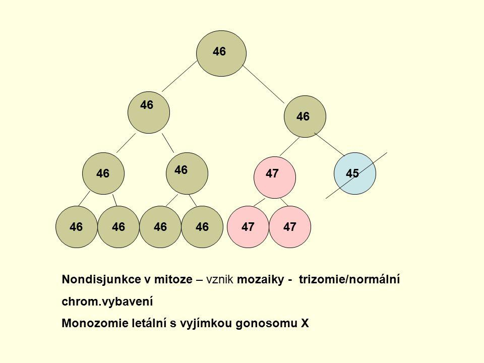 46 4745 46 47 Nondisjunkce v mitoze – vznik mozaiky - trizomie/normální chrom.vybavení Monozomie letální s vyjímkou gonosomu X