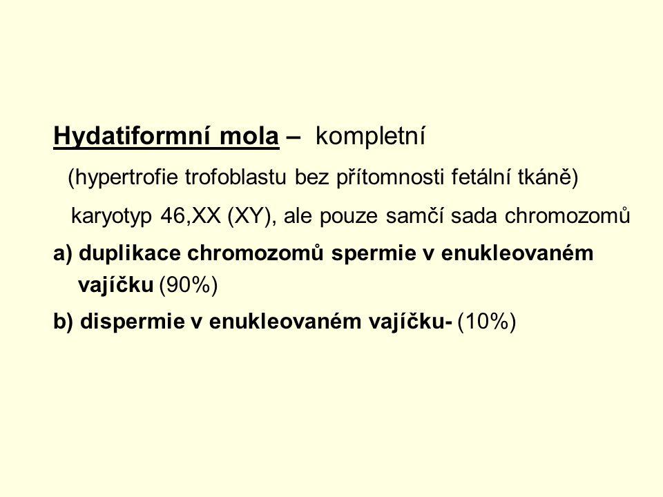 Hydatiformní mola – kompletní (hypertrofie trofoblastu bez přítomnosti fetální tkáně) karyotyp 46,XX (XY), ale pouze samčí sada chromozomů a) duplikac