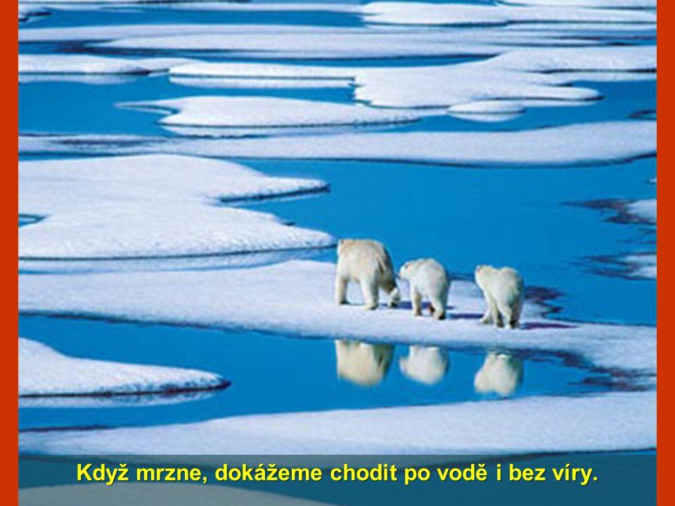Když mrzne, dokážeme chodit po vodě i bez víry.