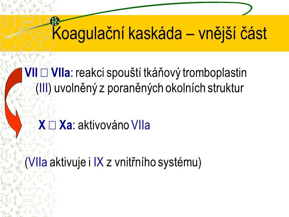Koagulační kaskáda – vnější část VII  VIIa : reakci spouští tkáňový tromboplastin (III) uvolněný z poraněných okolních struktur X  Xa : aktivováno