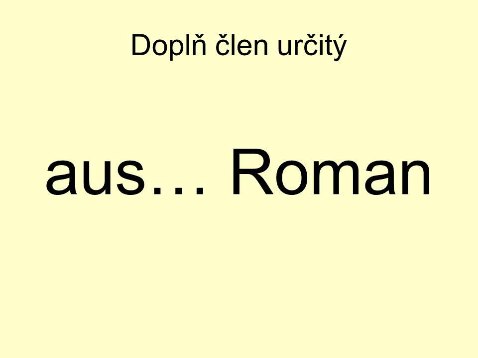 Doplň člen určitý aus… Roman
