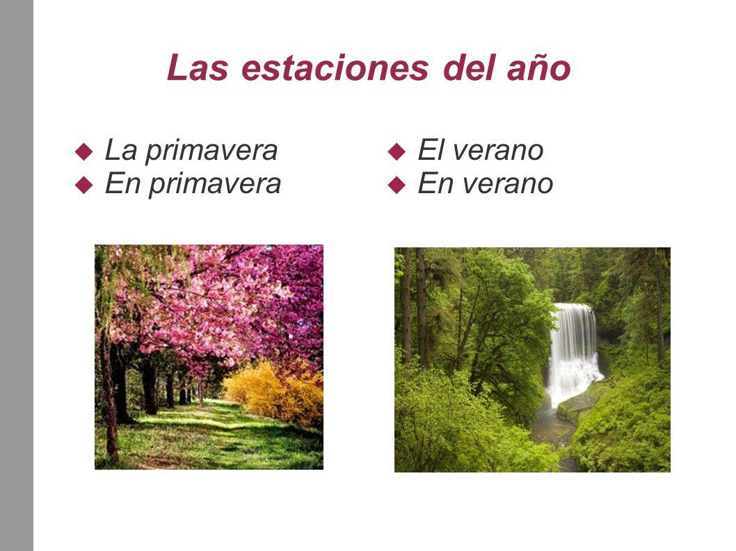 Las estaciones del año  La primavera  En primavera  El verano  En verano