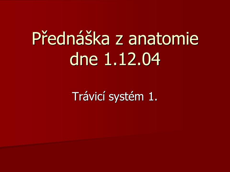 Přednáška z anatomie dne 1.12.04 Trávicí systém 1.