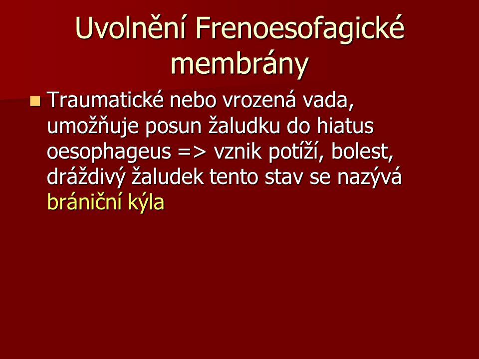 Uvolnění Frenoesofagické membrány Traumatické nebo vrozená vada, umožňuje posun žaludku do hiatus oesophageus => vznik potíží, bolest, dráždivý žalude
