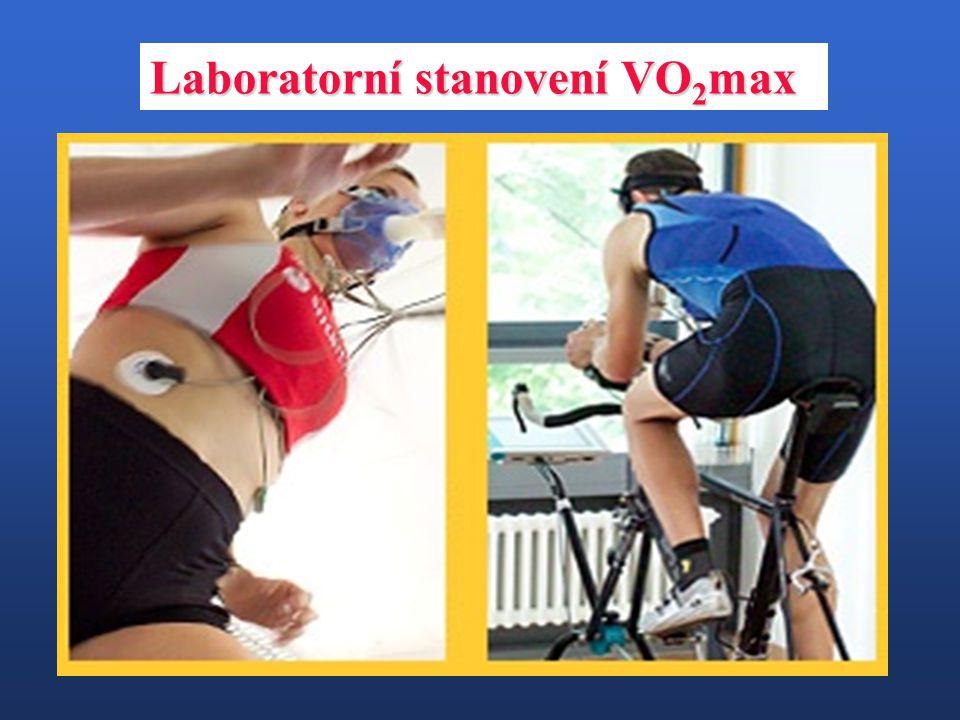 Laboratorní stanovení VO 2 max