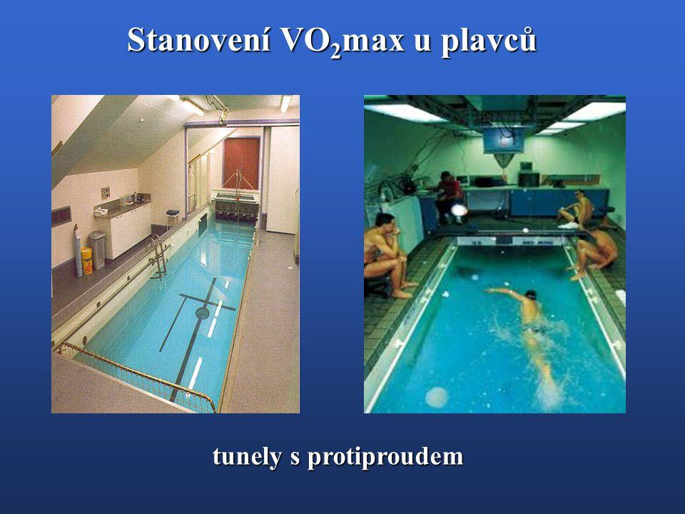 Stanovení VO 2 max u plavců tunely s protiproudem
