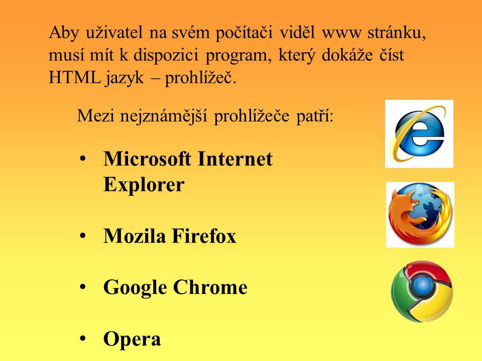 Jedním z prohlížečů je i program Internet Explorer od firmy Microsoft