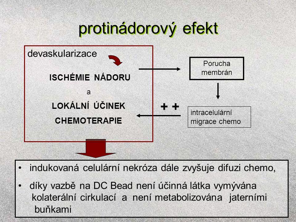protinádorový efekt + intracelulární migrace chemo Porucha membrán devaskularizace ISCHÉMIE NÁDORU a LOKÁLNÍ ÚČINEK CHEMOTERAPIE indukovaná celulární nekróza dále zvyšuje difuzi chemo, díky vazbě na DC Bead není účinná látka vymývána kolaterální cirkulací a není metabolizována jaterními buňkami