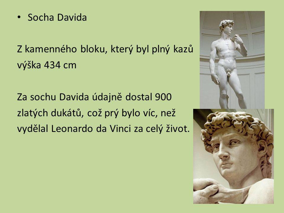 Socha Davida Z kamenného bloku, který byl plný kazů výška 434 cm Za sochu Davida údajně dostal 900 zlatých dukátů, což prý bylo víc, než vydělal Leonardo da Vinci za celý život.