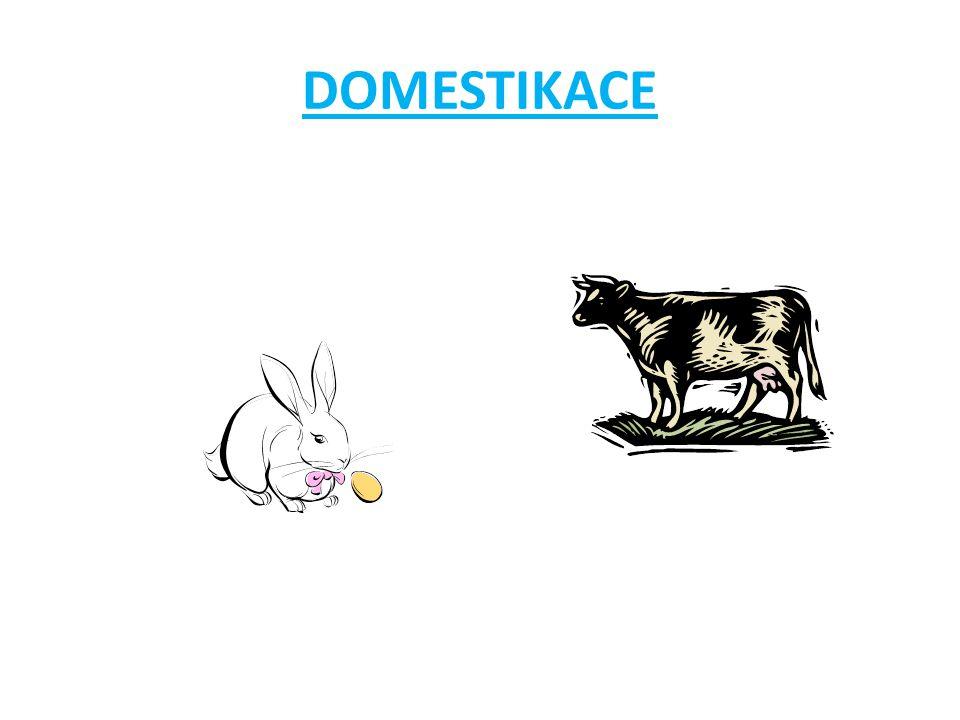 Domestikace Je zdomácňování divoce žijících živočichů.